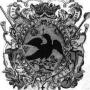 DESCUMPĂNITARIUL (I). Nivelul pastoratiei, între cancelaria BOR si spaima aviară a găinilor din parohii