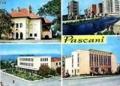 """SUB SEMNUL """"DOMNULUI TRANDAFIR"""". 90 de ani de asistentă medicală la Spitalul General CF Pascani"""
